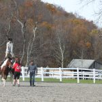 Teenage girl stands on the backs of two horses, three adults walk alongside her. Fall scene